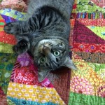 Izzy and New QuiltLR